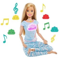 Barbie - Barbie Nefes Egzersizi Bebeği /Barbie Wellness Mattel-GNK01