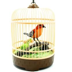 Vardem Oyuncak - Deprem Kuşu Kafesli